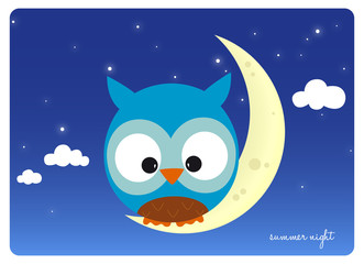 owl sitting on a crescent moon in a starry summer night