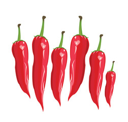 red сhili pepper - Illustration
