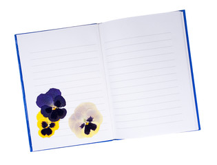 Dried pressed pansy flowers in notebook - memories, summers past