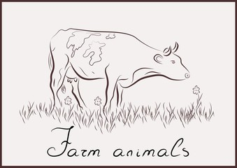 Cow farm animals vector on the white background