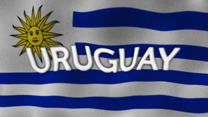 Uruguay Flag and Text, Textile Background