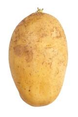 close - up small new and fresh raw potato