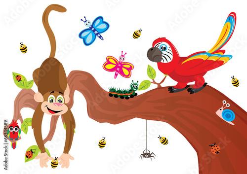 Zwierzątka, małpka, motyle, papugi