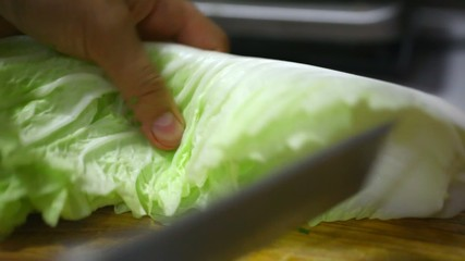 Female hands chopping savoy cabbage on wooden board.