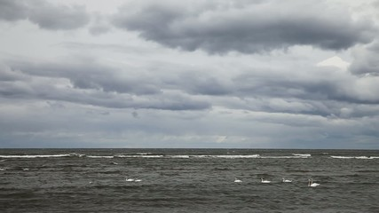 Stormy Baltic sea in cool day.