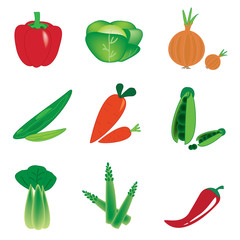 vector vegetables set on white background