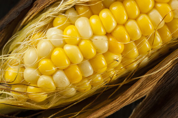 Homade Grilled Corn on the Cob