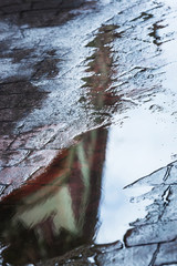 reflected in a rain puddle