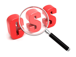 CSS Search Cascading Style Sheets