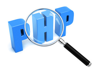 PHP Search Web development