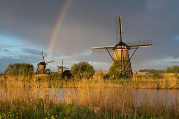 Windmills at Kinderdijk ,Netherlands
