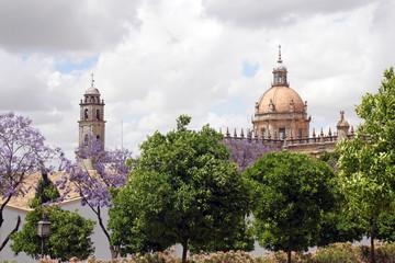 The Cathedral of San Salvador in Jerez de la Frontera, Spain