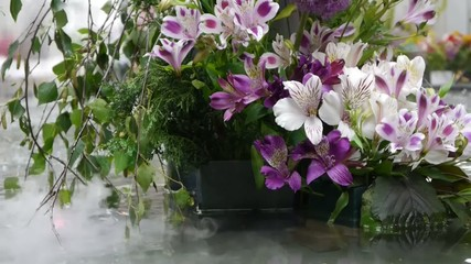 Purple lily with humidifier