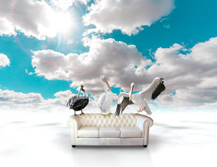 Sofa concept. Landscape and birds