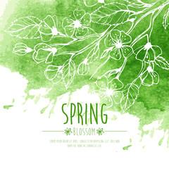 Blossoming Spring Branch. Vector illustration