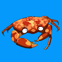 cartoon crab on a blue background