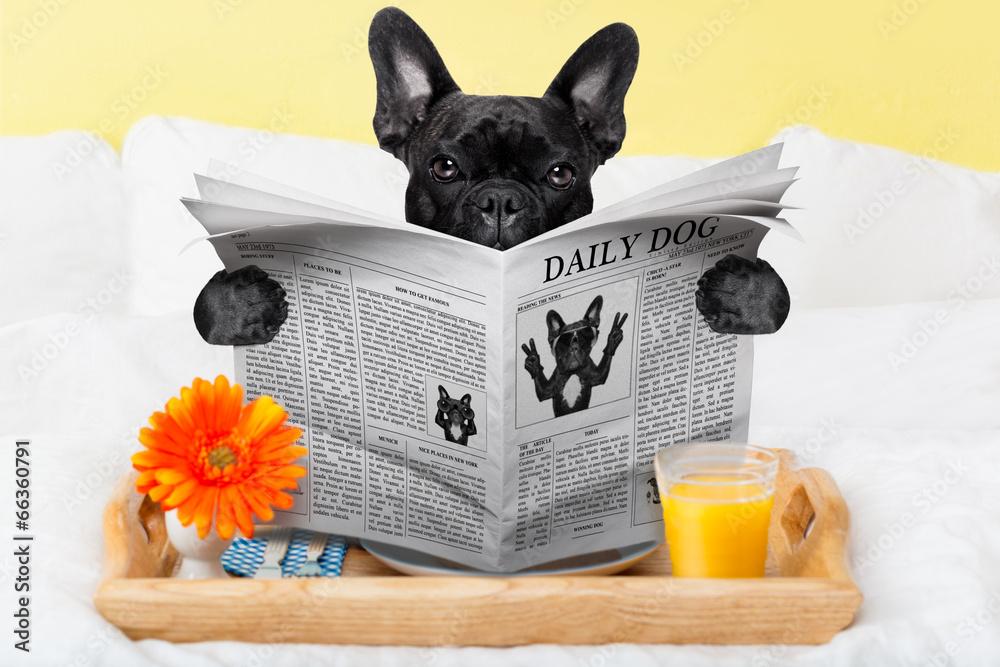 śniadanie gazeta czytanie - powiększenie