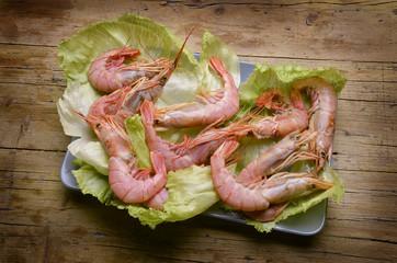 Camarón Shrimp Gambero Crevette Garnele Camarão פראון (סרטנים)