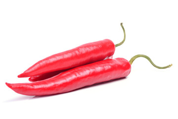 Red hot pepper chili