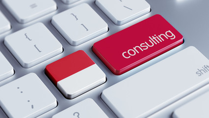 Indonesia Consulting Concept