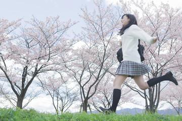 桜をバックに走る高校生