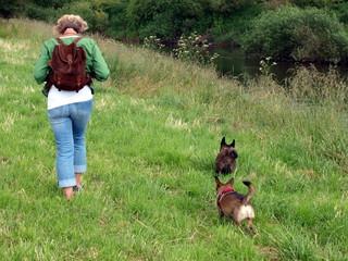 Fußmarsch mit Hunden