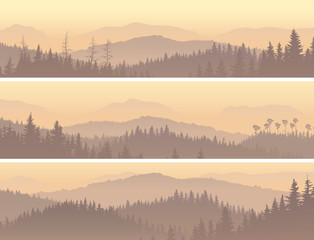Banners of wild coniferous wood in morning fog.
