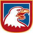 American Bald Eagle Head Shield Retro