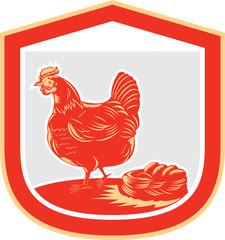 Hen Chicken Nest Egg Shield Retro