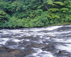 Rapids in river, Nikko, Tochigi Prefecture, Japan