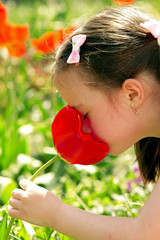 Little cute girl smelling a tulip in a clearing