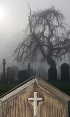 Spooky old headstone in a foggy graveyard