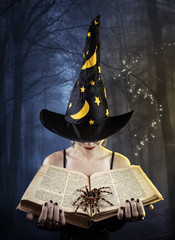 Witch with book and spider
