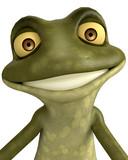 frog cartoon face