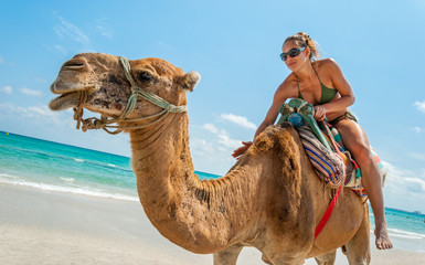 Pretty Young Woman Sitting on a Camel