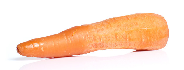 Carrot in White background