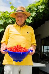 Senior mit gepflückten Johannisbeeren