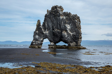 Hvitserkur, rock with the shape of a dinosaur