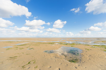 Shallow at dutch wadden sea