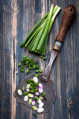 Green onions and vintage knife for chopping
