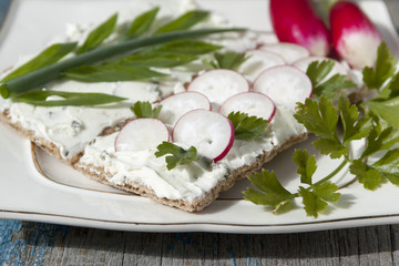 Toasts with curd cream with radishes and green onions.