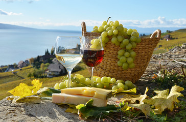 Wine and grapes on the terrace of vineyard in Lavaux region, Swi