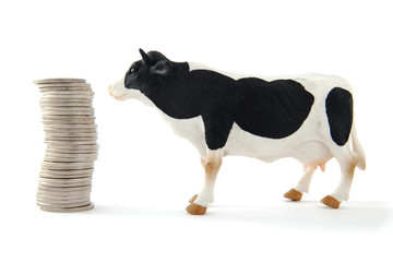 Money and a cow