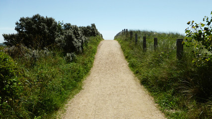 Dünenweg...Holland - einsam