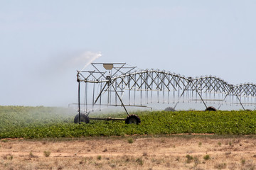 self-propelled irrigation system