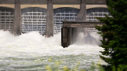 Dam Sequence Sow Motion