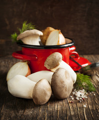 King trumpet mushrooms and vegetables for cooking soup