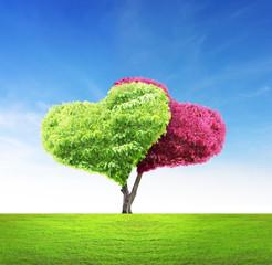 Tree in shape of heart