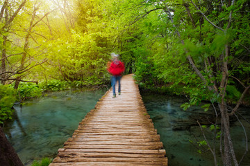 Deep forest pathway in the sunshine. Plitvice lakes, Croatia
