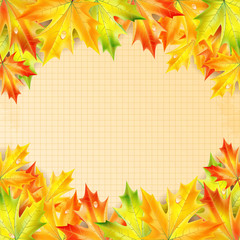 Autumn maple leaves on a background of notebook sheet with place